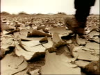 MCU low angle view as feet walk across cracked dry land, Algeria, Africa