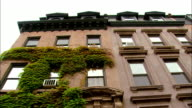 Low angle wide shot brownstone building covered with ivy/ tilt down stoop of building/ Brooklyn, New York