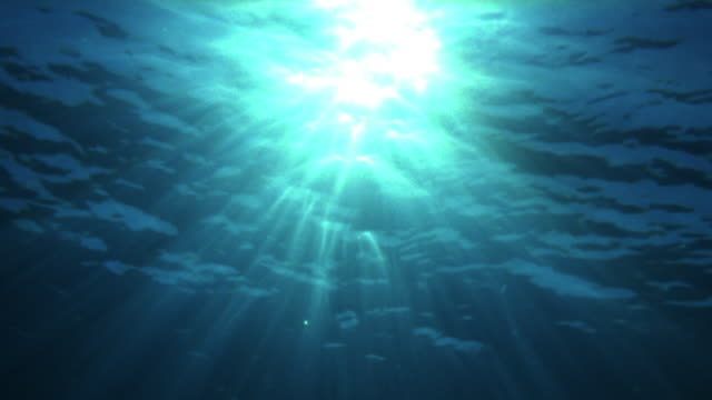 Low angle wide shot sun rays penetrating surface of water / Tahiti, French Plynesia