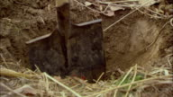 CU Low section of person digging hole in dirt / Beijing, China