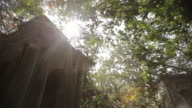 Low-angle shot of the sun shining brightly over a large, columned mausoleum in South Park Street Cemetery in Kolkata (formerly Calcutta), West Bengal, India.