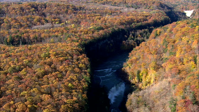 Lower Falls - Aerial View - New York,  Livingston County,  United States