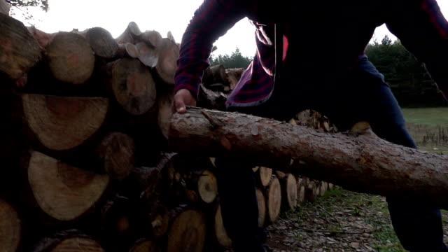 Lumberjack transporterar trä logg