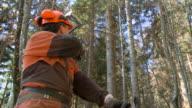HD: Lumberjack resting and explaining