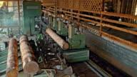 Ein Protokoll in Dielen in einem Sägewerk schneiden Maschine
