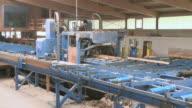 WS Machine cutting up logs in sawmill / Trier, Rhineland-Palatinate, Germany