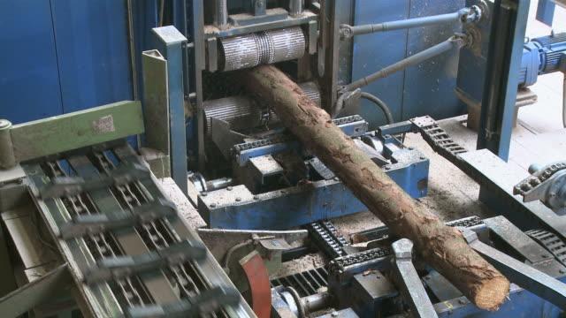 CU Machine cutting up logs in sawmill / Trier, Rhineland-Palatinate, Germany