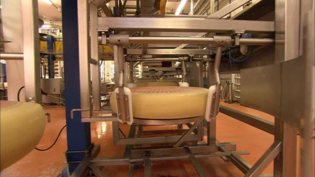Machines process circular pieces of cheese in a factory.