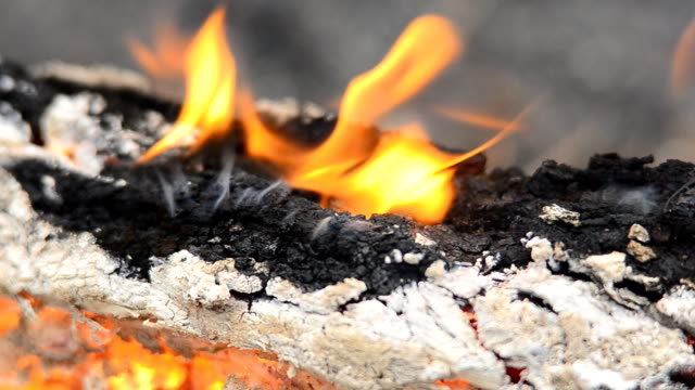 Macro of oak bark with heated gases escaping and igniting
