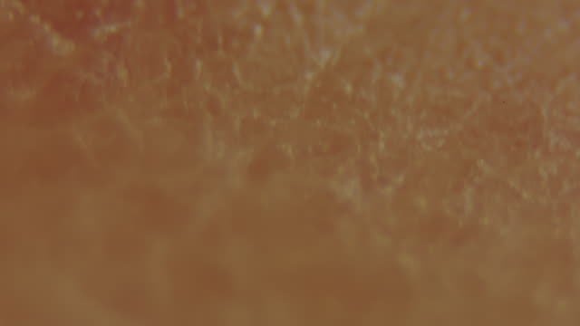 Macro shot of human finger ECU
