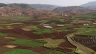 Madagascar : Fields