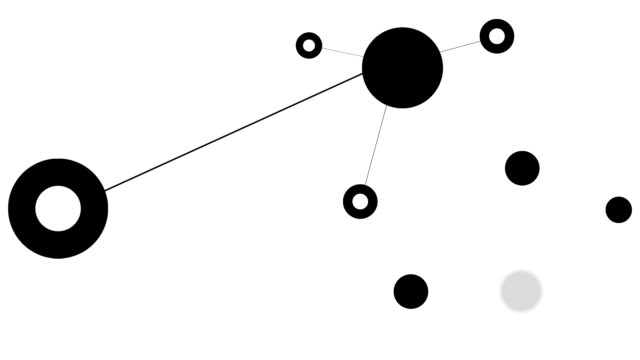 NETWORK : main and sub connections (LOOP)