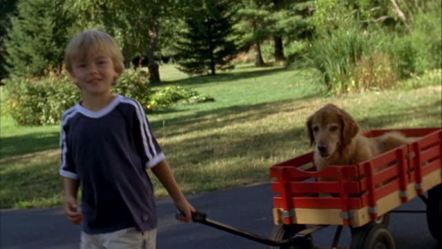 MS, USA, Maine, Yarmouth, Boy (6-7) pulling wagon with dog on driveway
