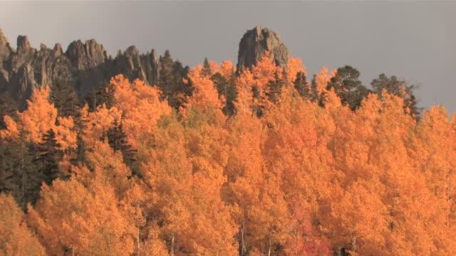 MS ZO Majestic Rocky Mountains Peaks, Brillant Yellow Aspen Trees / Telluride, Colorado, United States