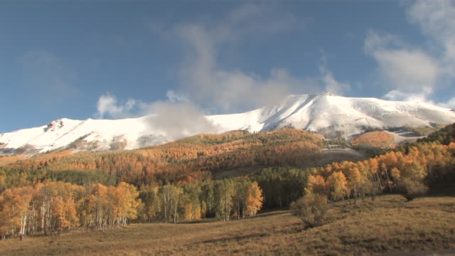 MS T/L Majestic Rocky Mountains Peaks, Brillant Yellow Aspen Trees / Telluride, Colorado, United States