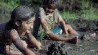 Making Mud Piles