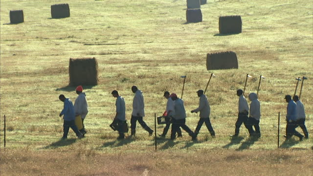 Male criminal prisoners carrying barrels crates hoes walking in double line behind guard in fenced farm field w/ hay bales BG guard in rear