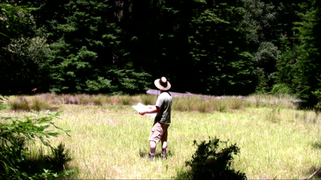 Male Hiker Reading Map in a Meadow.
