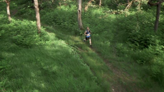 AERIAL Male marathon competitor running across a forest clearing