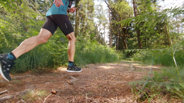 SLO MO DS Male runner running across a forest clearing