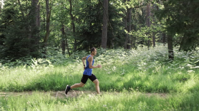 SLO MO Male runner running on a forest trail in sunshine
