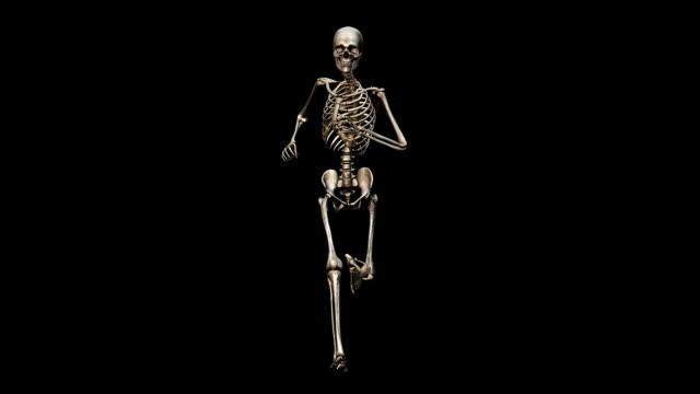 'Male skeleton, running'