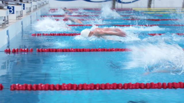 TS Male swimmers in butterfly style competition racing to finish