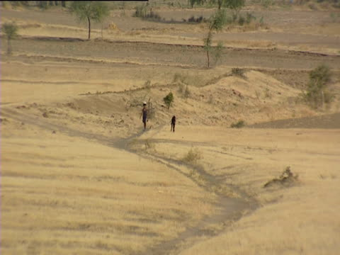 Man and goat walking through dry bare fields India