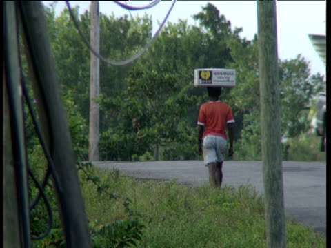 Man carries box of bananas on head along road as lorries and cars pass Windward Islands