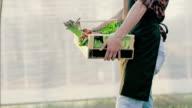 SLO-MO-Mann trägt eine Kiste voll mit Gemüse im Gewächshaus