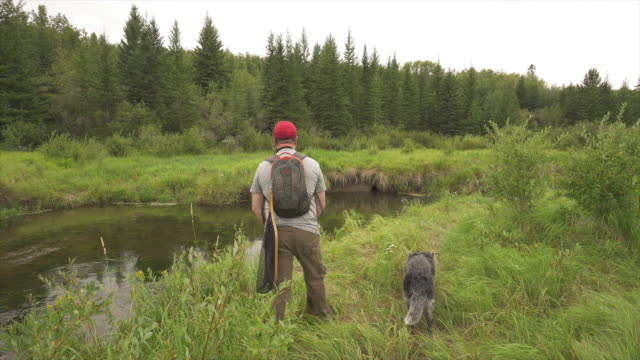 Man casts fly fishing line into mountain stream stock for Ascent fly fishing