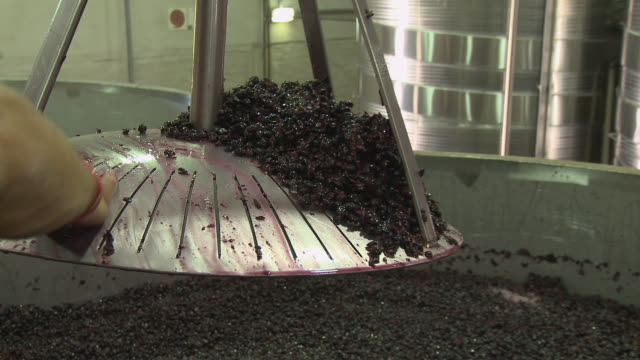 CU ZO MS Man cleaning skins off press in fermentation tank, Franschhoek, Western Cape, South Africa