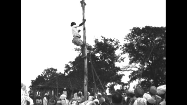 Man climbs pole while group of men stand around at bottom beating pole with long sticks he grabs something off top of pole and climbs back down / CU...