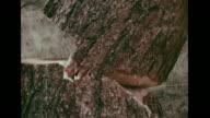 Man cutting down ponderosa pine tree w/ ax trunk fragments on ground VS Tree falling over CU Tree stump VS Man making crayon rubbing of annual tree...