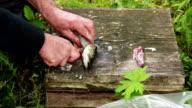 Man cutting off fish head