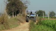 MS Man driving tractor on dirt road, Farrukh Nagar / Gurgaon, Haryana, India
