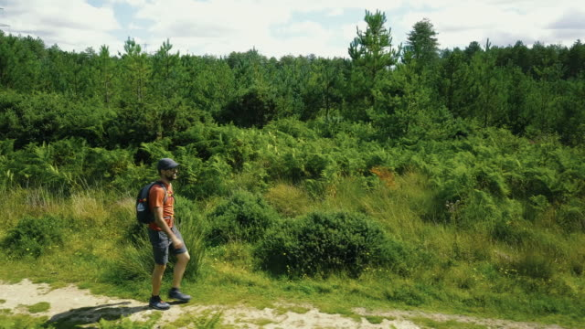 Mann die wilde Natur im Wald - Cornwall zu erkunden. 4K Video
