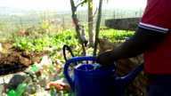 MS man filling watering can on farm, KwaZulu Natal, South Africa