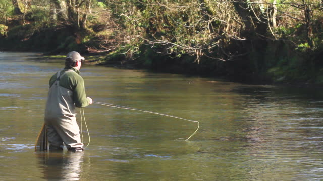 MS Man fly fishing at down stream / Devon, England, United Kingdom