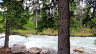 Mann Fliegenfischen auf dem Berg Fluss