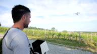 Man Flying a Drone Over Vineyard