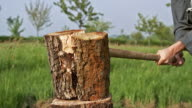 CU SLO MO Man hitting on wood by axe for splitting wood / Vieux Pont, Normandy, France