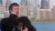 Man in gorilla costume holding mask and talking on cell phone on bank of East River / Long Island City, Queens, New York City