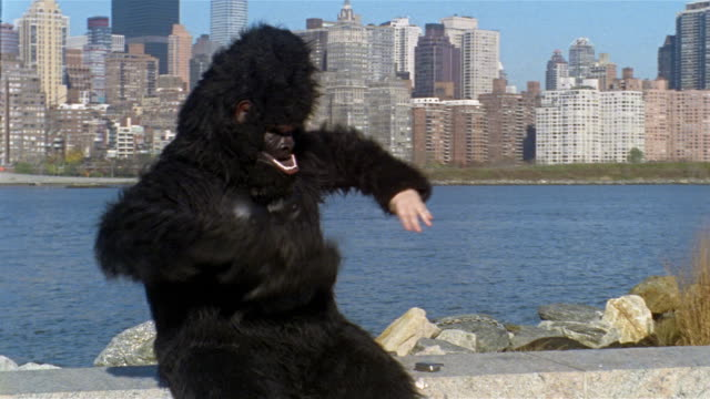 Man in gorilla suit sitting on bank of East River and pounding chest / gesturing to camera to wait before taking off gloves and mask to answer cell phone / talking on phone / view of Manhattan skyline across water / Long Island City, Queens, New York City