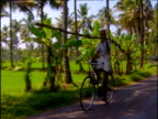 Man in turban cycles past camera carrying long piece of wood with lush green paddy fields and palm trees in background. Kerala