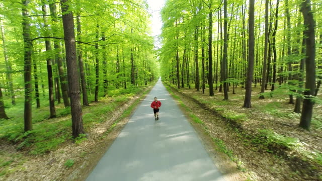 HD HELI: Man Jogging On A Forest Road