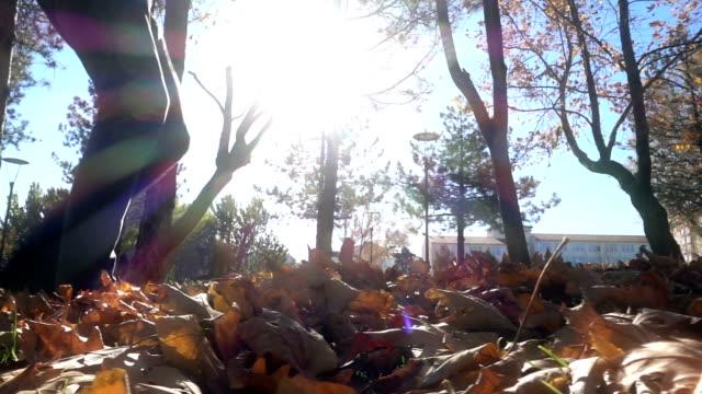 Man kicking autumn leaves
