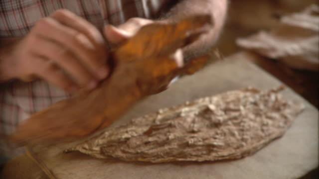 CU Man making cigar with tobacco leaves / San Luis, Pinar del Rio, Cuba