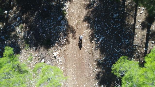 Mountainbiker Mann reitet auf einem Sport-Fahrrad auf einem Waldweg.