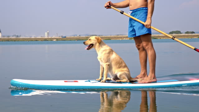 Man paddleboarding with his dog
